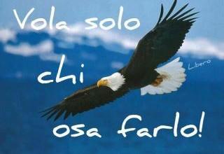 Solo chi O.S.A, riesce a volare